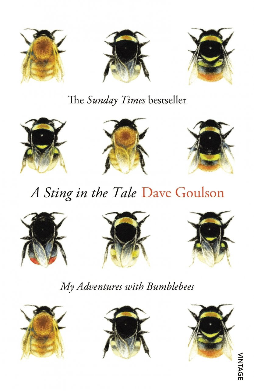 A Sting in the Tale - My Adventures with Bumbles Dave Goulson