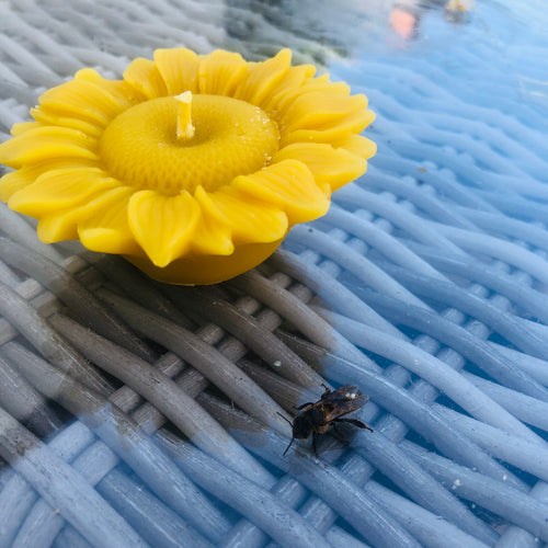 Beeswax Sunflower Candle
