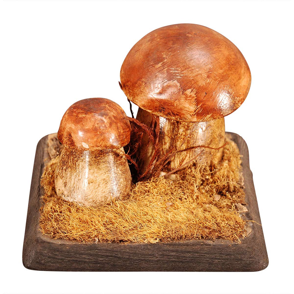 Plaster and Wood Mushroom Model