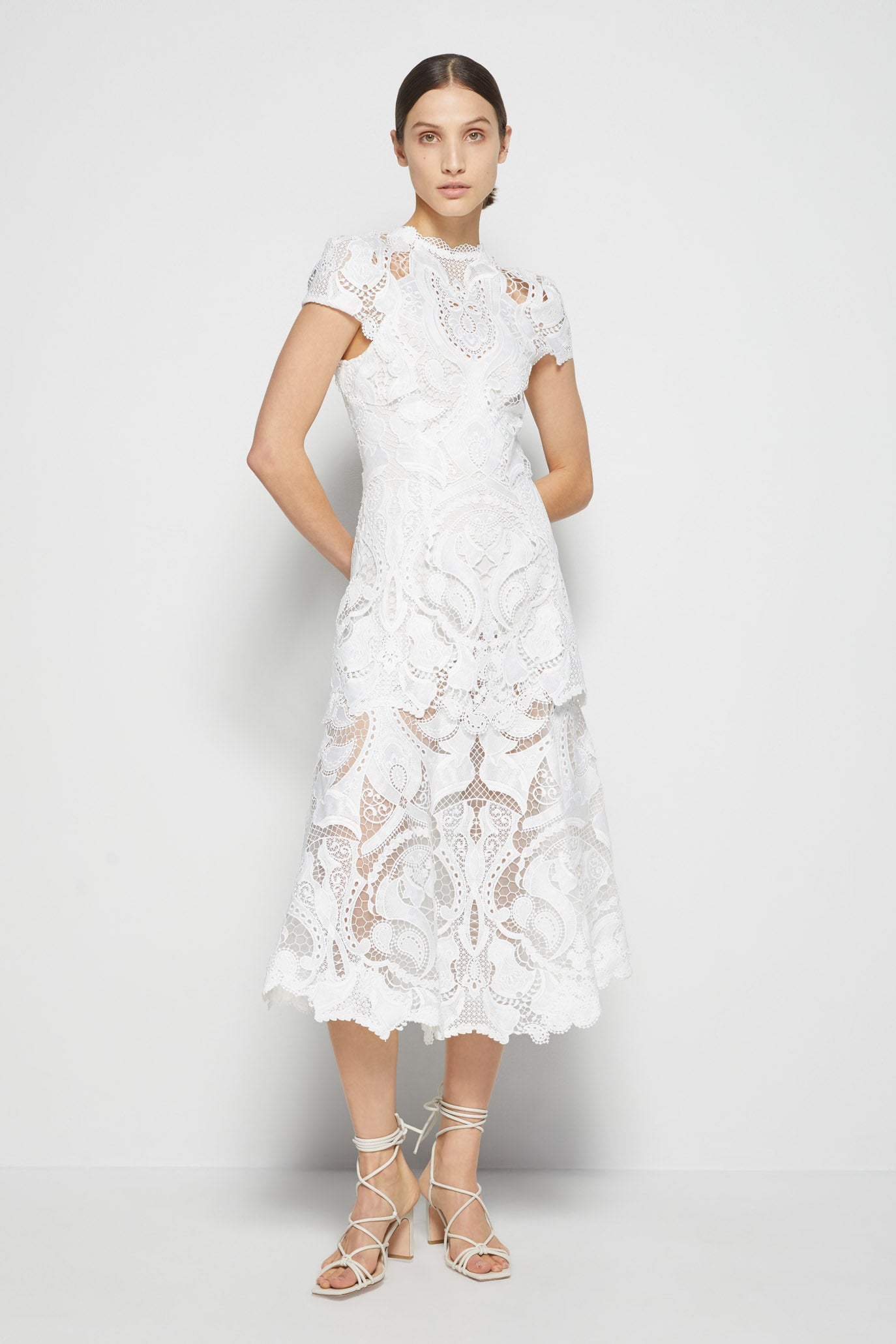 Signature Lace Appliqué Midi Dress
