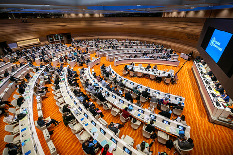O2 Living Blog - World Health Organization 72nd World Health Assembly