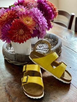 ALLIGATOR BIRKENSTOCK - Yellow Matte - 40N - IN STOCK