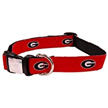 UGA Oval G Dog Collar - Red
