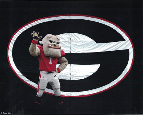 Hairy Dawg Mascot 8 x 10 Photo
