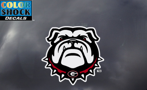 UGA Georgia Bulldogs New Bulldog Head Decal