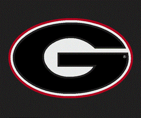 UGA Georgia Bulldogs Colorshock Large Oval G Decal Sticker