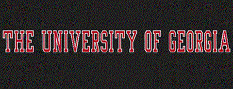 The University of Georgia Color Shock Car Decal