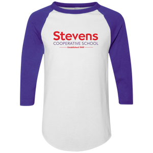 Adult Colorblock Raglan Jersey (available in 2 colors)