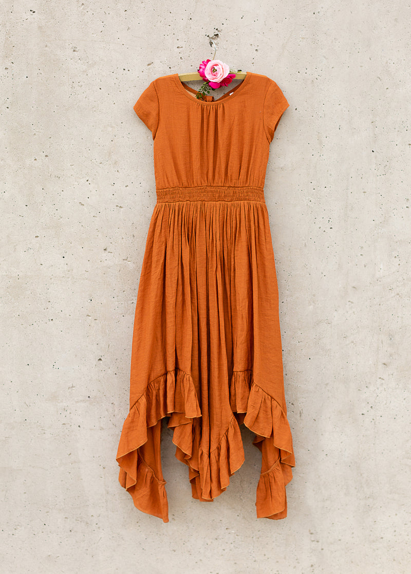 *NEW* Briley Dress in Spice