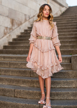 Elodie Dress in Pale Mauve