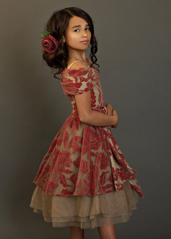 Belle Dress in Pompeian Red