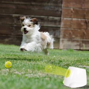 Dog's Tennis Ball Launcher