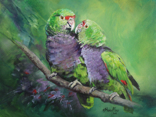Vinaceous Amazon original painting Kitty Harvill World Parrot Trust