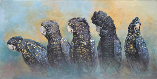 Red tailed black cockatoo original painting Ria winters World Parrot Trust