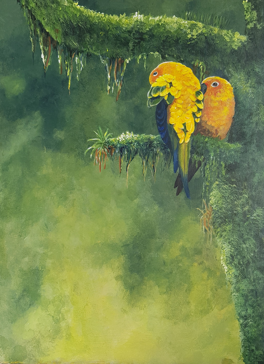 Sun Conures original painting Ian Griffiths World Parrot Trust
