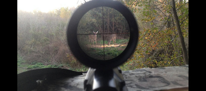 Best Scopes for Hunting in Canada