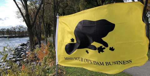 Mind Your Own Dam Business - Flag