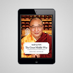 The Great Middle Way: Clarifying the Jonang View of Other-Emptiness (eBook)