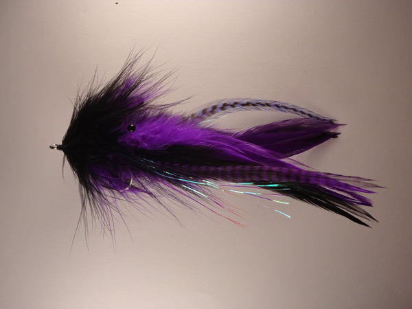 Semper Squid - Purple Black IF264