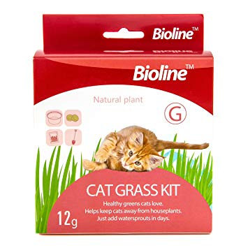 Bioline Cat Grass Kit 12g
