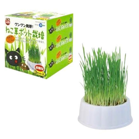Marukan Grass Planting Kit for Cats