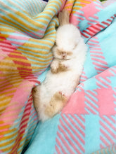 Load image into Gallery viewer, PRE ORDER - My Little Easter Blanket ©