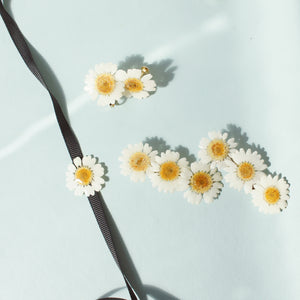 *REAL FLOWER* White Daisy Hair Clip