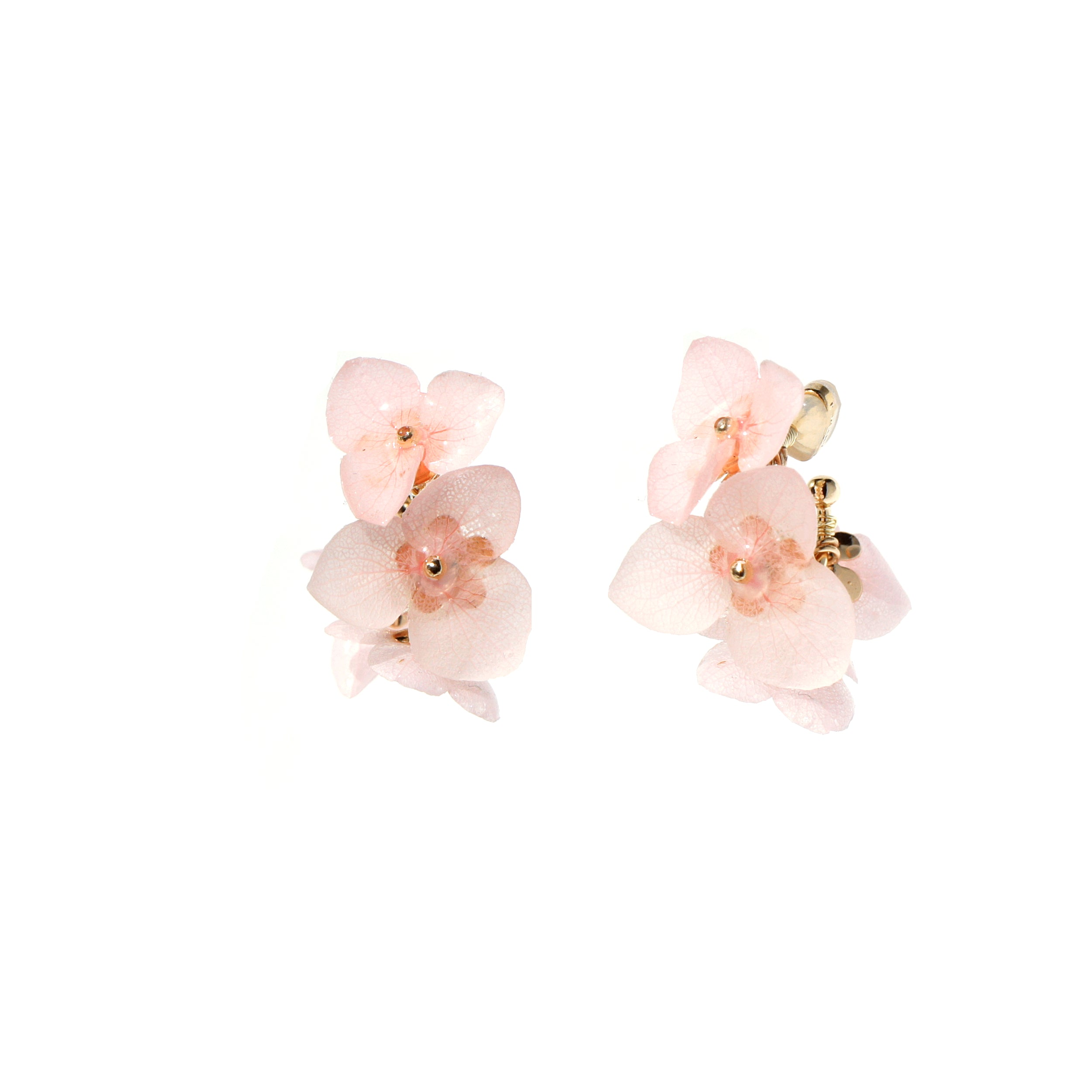 *REAL FLOWER* Libelle Hydrangea Hoop Earrings