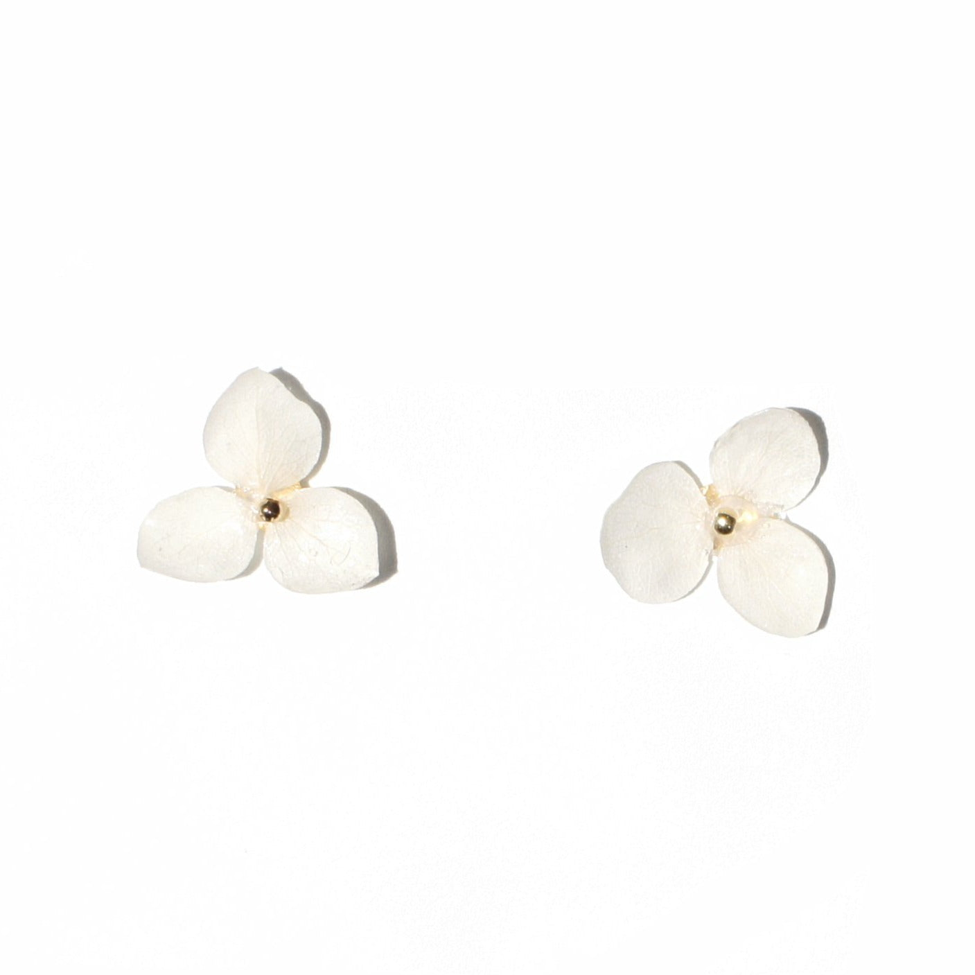 *REAL FLOWER* Libelle Hydrangea Flower Stud Earrings w/Gold Vermeil Posts