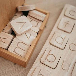 QToys CVC Word Kit