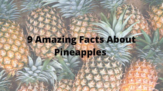 9 Amazing Facts About Pineapples