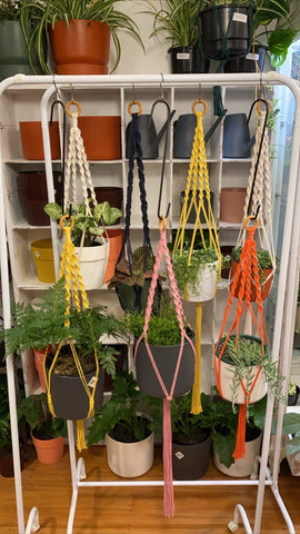 Make your own macrame plant hanger!