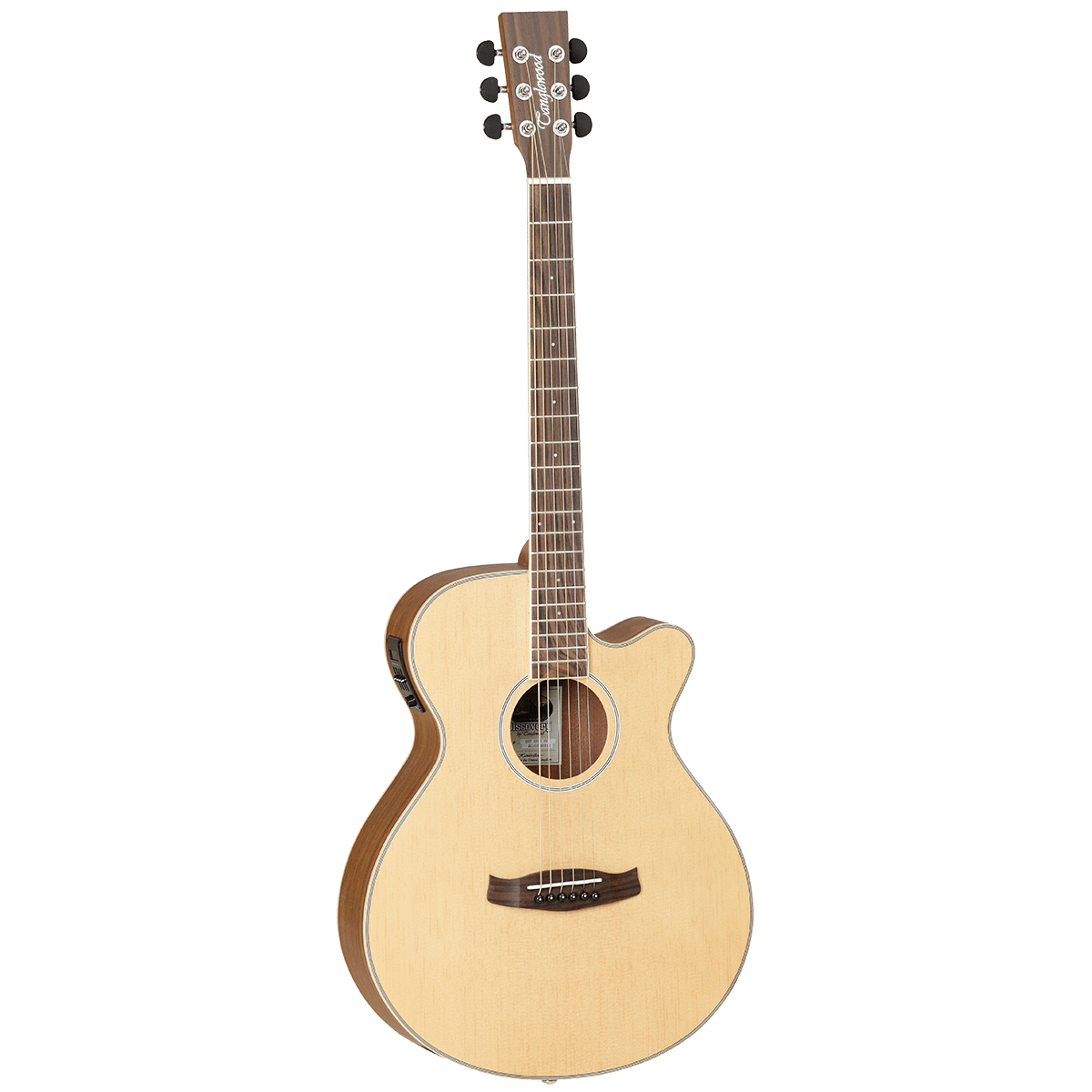 TANGLEWOOD DISCOVERY EXOTIC (OVANGKOL) SUPER-FOLK ACOUSTIC/ELECTRIC GUITAR - Arties Music Online