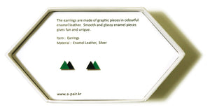 Enamel Leather Earrings _  2 colors _  green, black - A.pair Earrings_contemporary jewelry