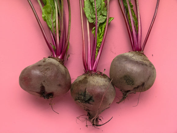 three large pink beetroots with green stalks on a bright pink background.