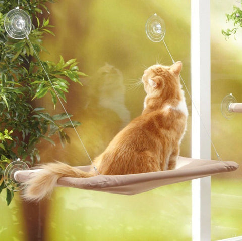 Cute Pet Hanging Beds Bearing 20kg Cat Sunny Seat Window Mount Pet Cat Hammock Comfortable Cat Pet Bed