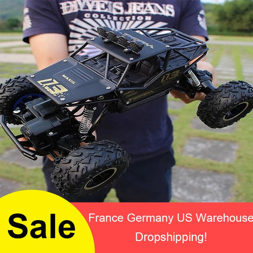1:16 4WD RC Car Rock Crawlers Drive Car Double Motors - 4allshoppers