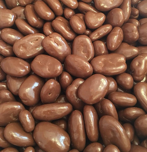 Chocolate Covered Pecans 8 oz Bag