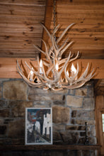 8 Light Tall Mule Deer Antler Chandelier