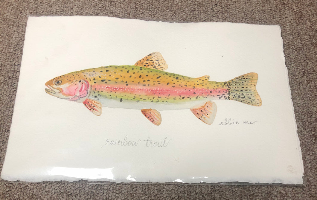 Rainbow Trout Original by Abbie Mcrary