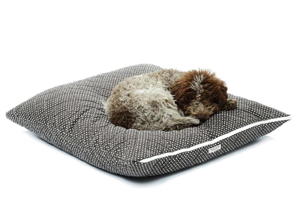 Utility Canvas Zip Sham Printed Dog Bed