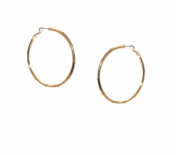 Pipe Clasp Hoops
