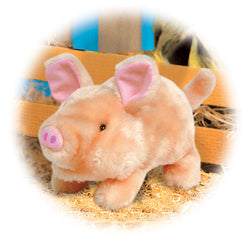 Pudgey The Piglet