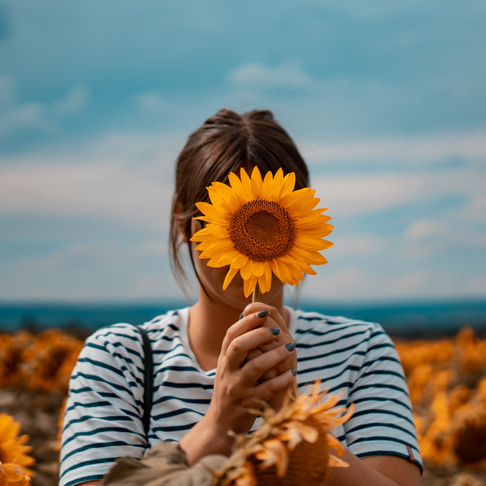 Ode To The Sunflower: A Playlist