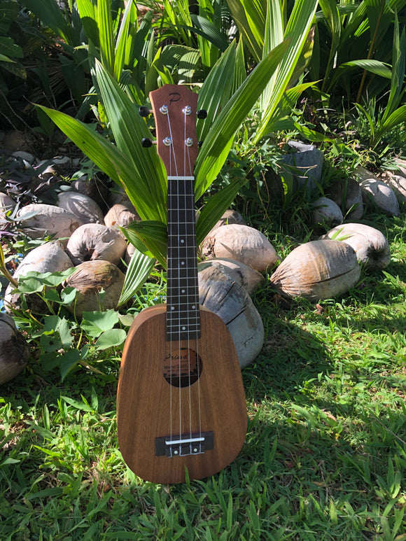 Student Model Pineapple Ukulele