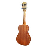 ALL NEW Kamoa® E5-C [CONCERT] (100% solid wood Cedar top)