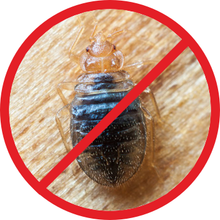 Load image into Gallery viewer, BedBug 360 ArthroPad