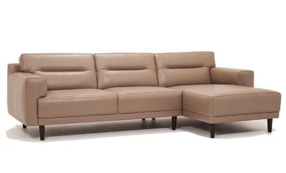 Remi 2-Piece Sectional with Chaise
