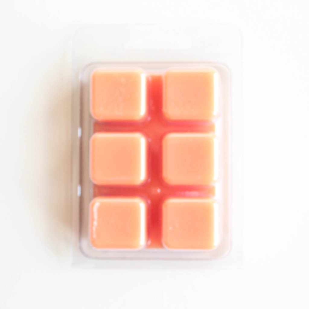 Fruit Slices Wax Melts, 3 oz