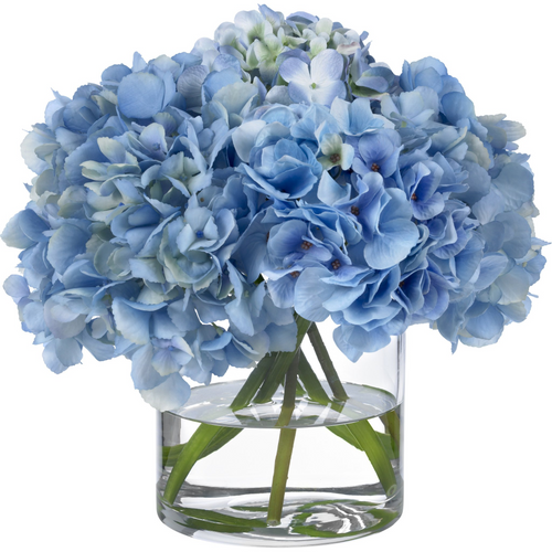 Blue hydrangeas in glass cylinder